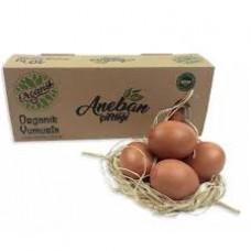 Aneban Organik Yumurta 10'lu
