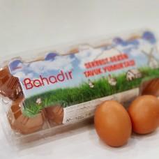 Bahadır Serbest Gezen Tavuk Yumurtası 10 Adet